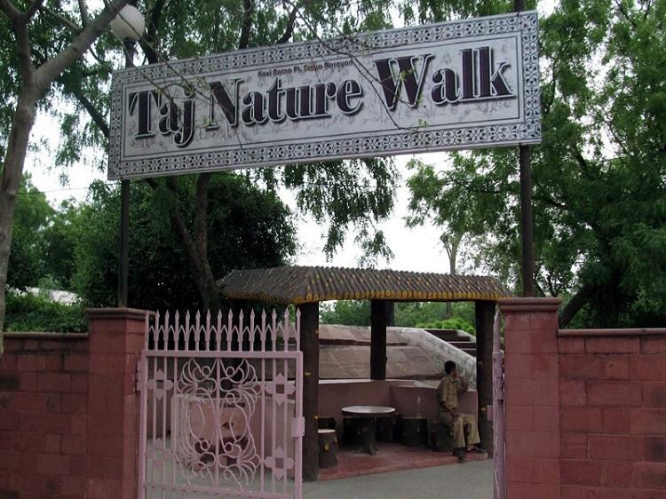 Taj Mahal Nature Walk