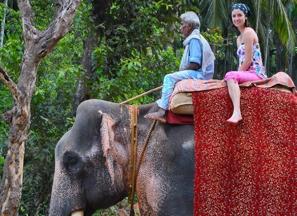 Goa Spice Plant Elephant Ride