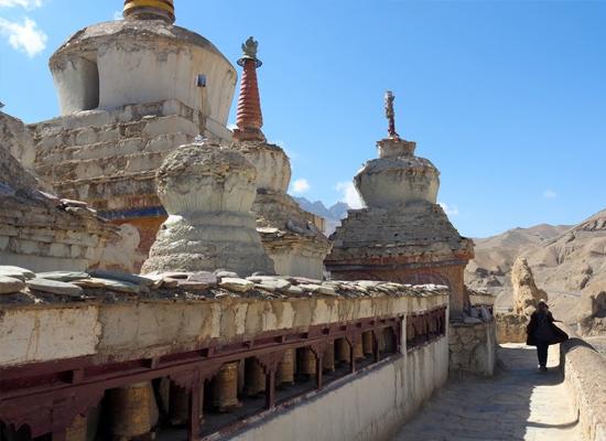 Alichi Leh Ladakh