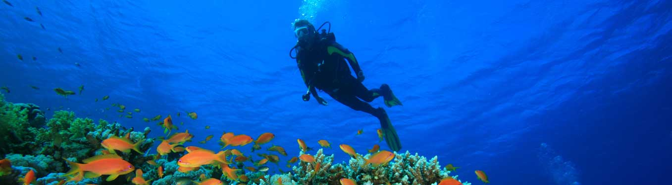 Scuba Diving at Lakshadweep