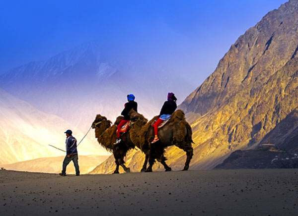 leh ladak tour  package