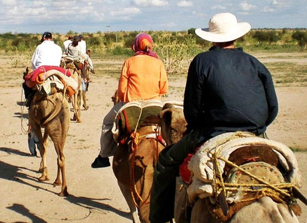 21 Days - Delhi Agra Jaipur Camel Safari Tour
