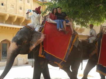 Amber Fort Elephant Ride, Jaipur