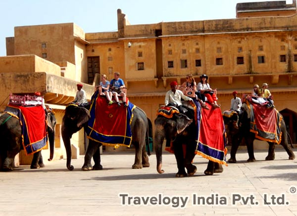 Elephant Ride at Amber Fort jaipur