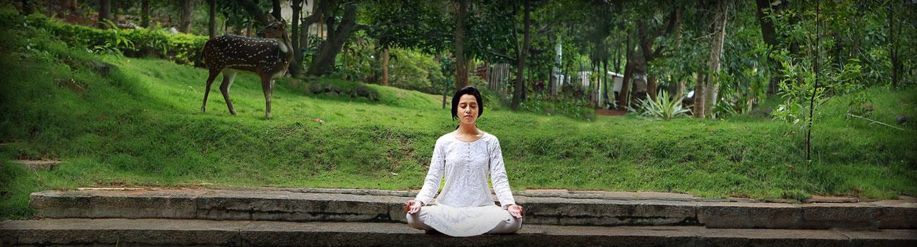 Yoga Tour India