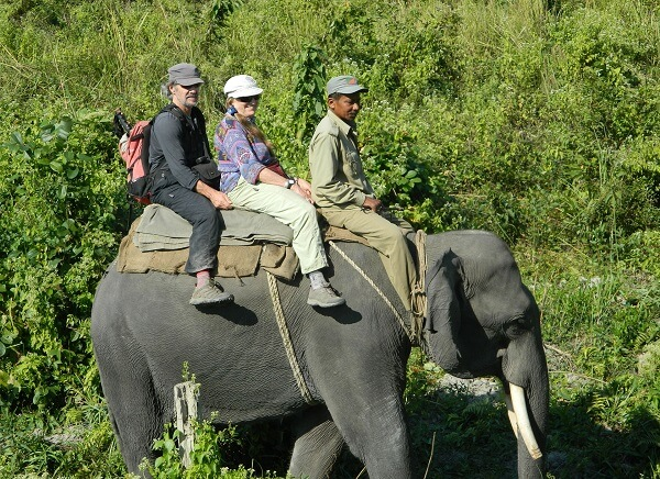 2 Nights 3 Days Manas National Park Tour from Guwahati