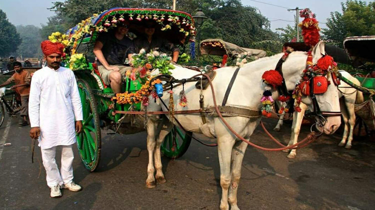 Tonga Ride in Delhi
