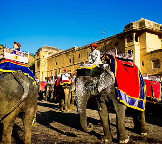 Jaipur Private Tour with Guide & Transport
