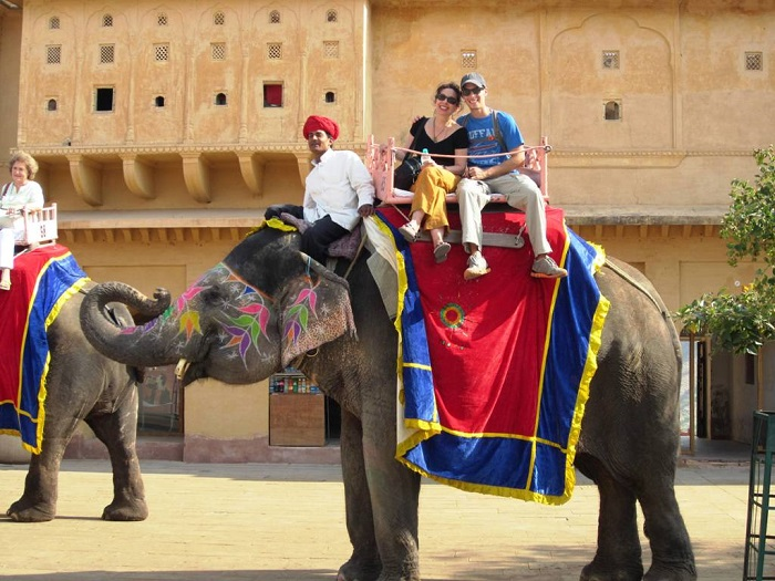 Elephant Safari at Amber Fort