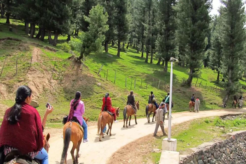 Pony Ride at Pahalgam