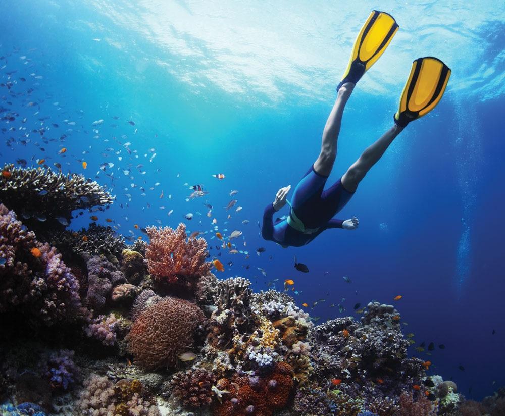 Scuba Diving Agatti Island