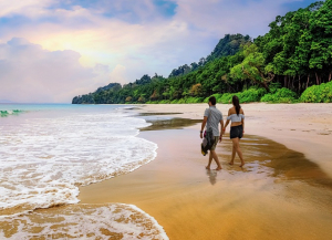 3 Nights 4 Days Andaman Honeymoon Tour - Itinerary, Sightseeing