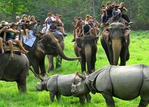 2 Nights 3 Days Kaziranga National Park Tour Packages