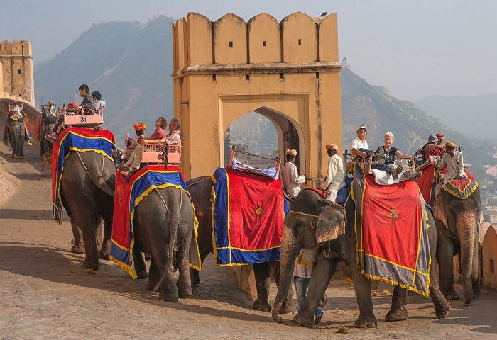 Elephant Safari at Amer Fort, Jaipur