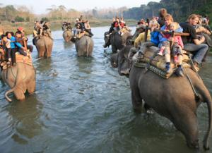India Nepal Wildlife Tour 15 Days - 14 Nights Safari