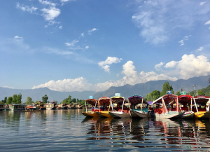 4 Nights 5 Days Kashmir Tour Package - Itinerary, Trip