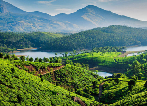 9 Nights 10 Days Kerala Tour Packages - Itinerary, Trip