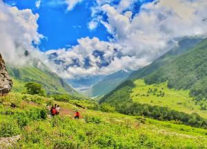 7 Nights 8 Days Valley of Flowers and Hemkund Trek from Jaipur
