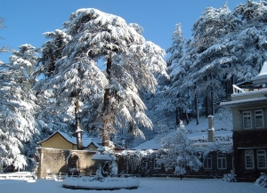 4 Nights 5 Days Shimla Tour Packages from Jaipur - Itinerary, Packages