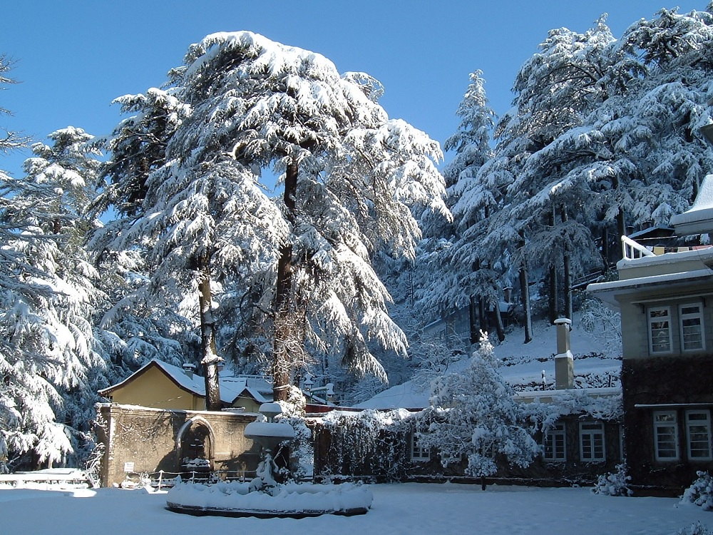 Shimla Snow Cladded