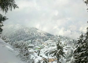 5 Days Shimla Tour from Ahmedabad - Itinerary, Packages