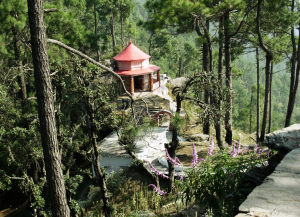 8 Nights 9 Days Uttarakhand Tour from Delhi - Itinerary, Sightseeing