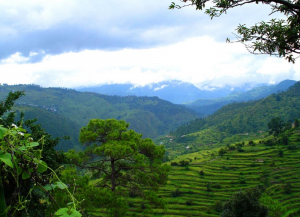 12 Nights 13 Days Uttarakhand Tour from Ahmedabad - Itinerary