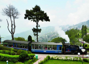 3 Nights 4 Days Darjeeling Tour Packages - Itinerary
