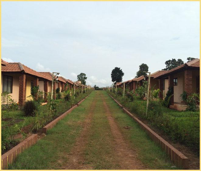 The peepal Tree Cottages