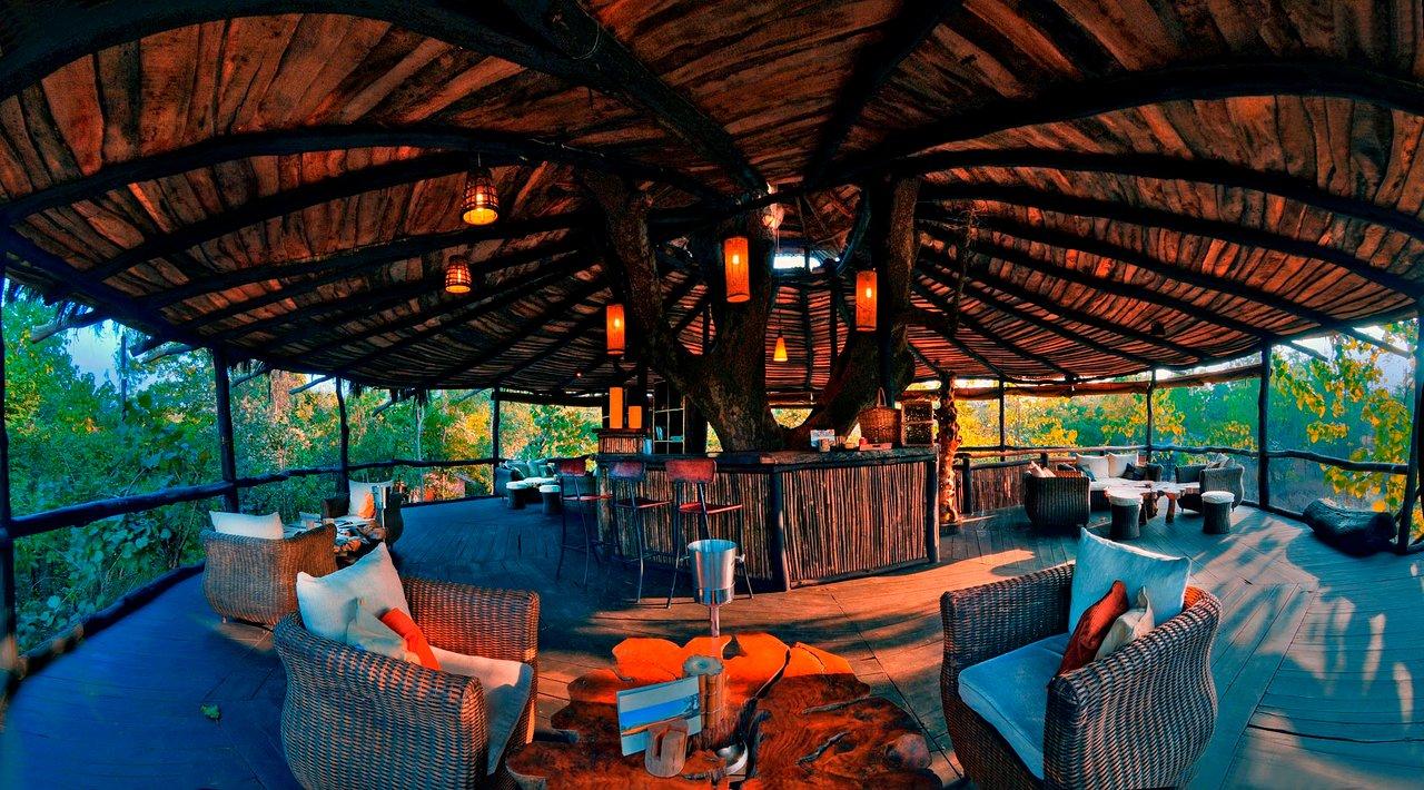 tree-house-hideway-restaurant