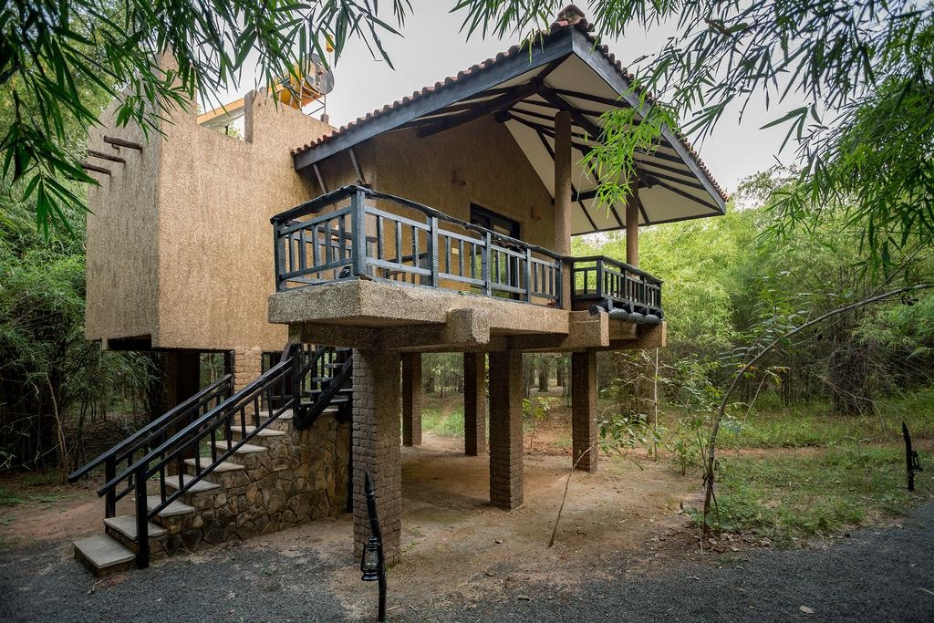 Kings Lodge Bandhavgarh Cottage1
