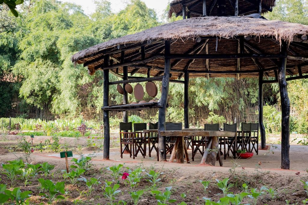 Kings Lodge Bandhavgarh Sitting Area