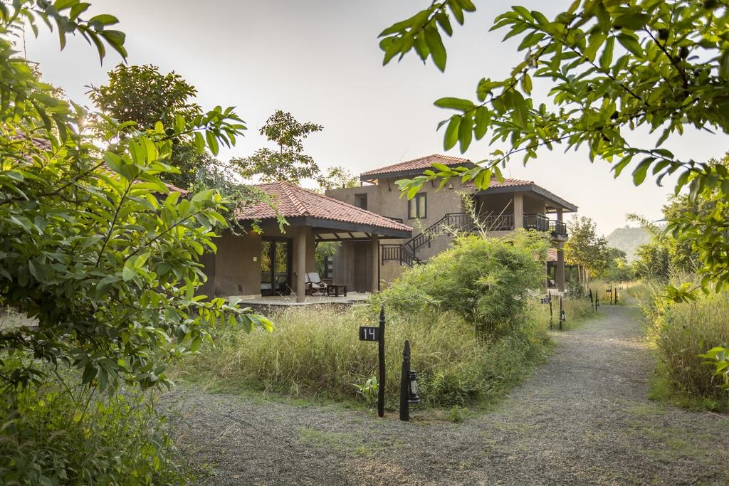 Kings Lodge Bandhavgarh4