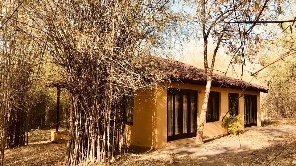 Infinity Resorts Bandhavgarh Deluxe Room