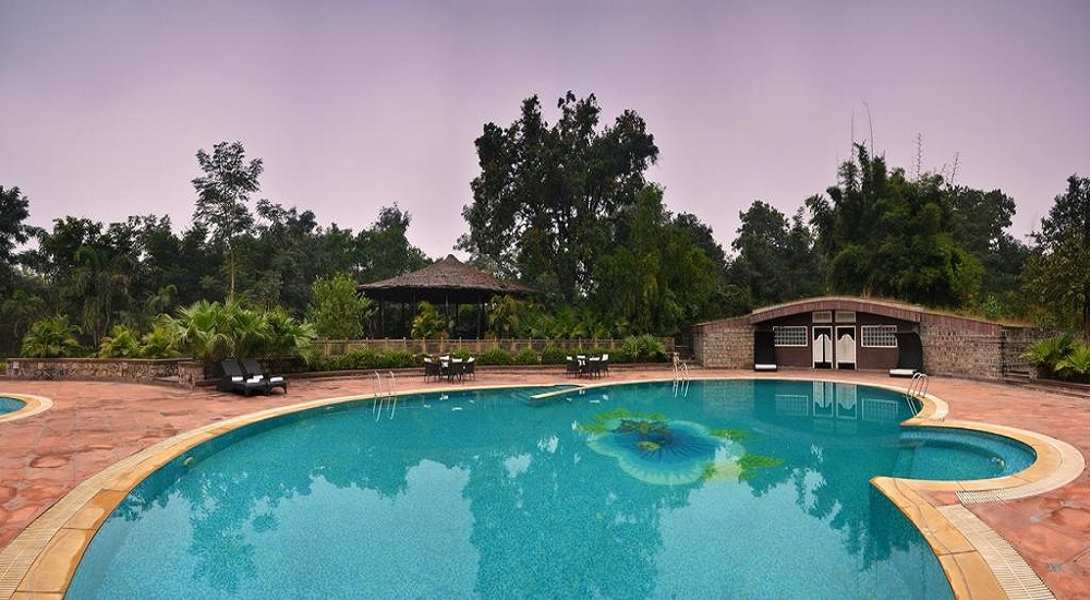 Syna Tiger Resort, Bandhavgarh Pool