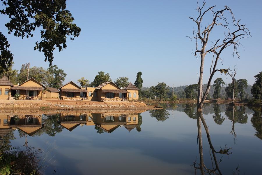 tiger-lagoon