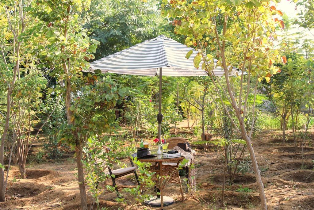 Ranthambore Kothi Garden Dining