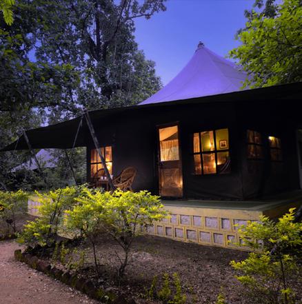 penh jungle camp