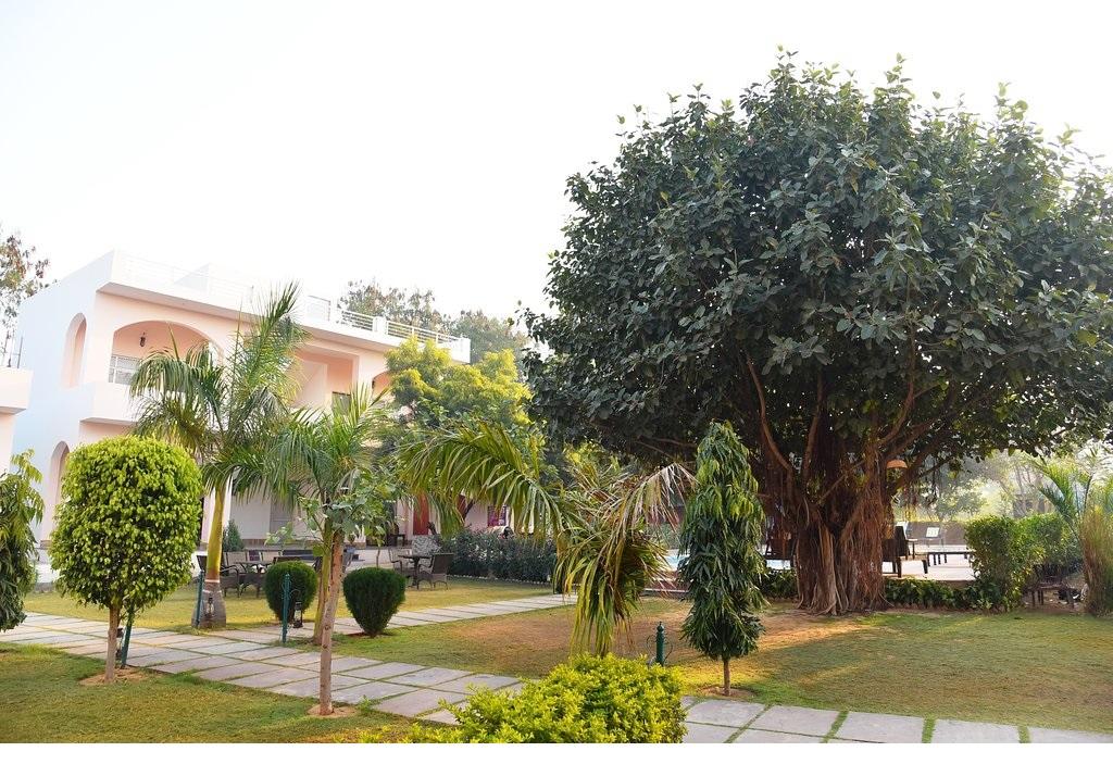 Shergarh Resort Ranthambore Garden