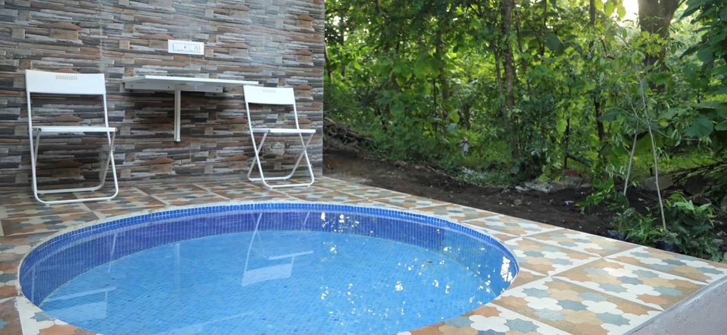 tigers n wood swimming pool