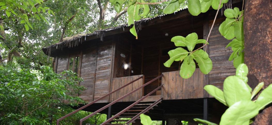wooden machaan4