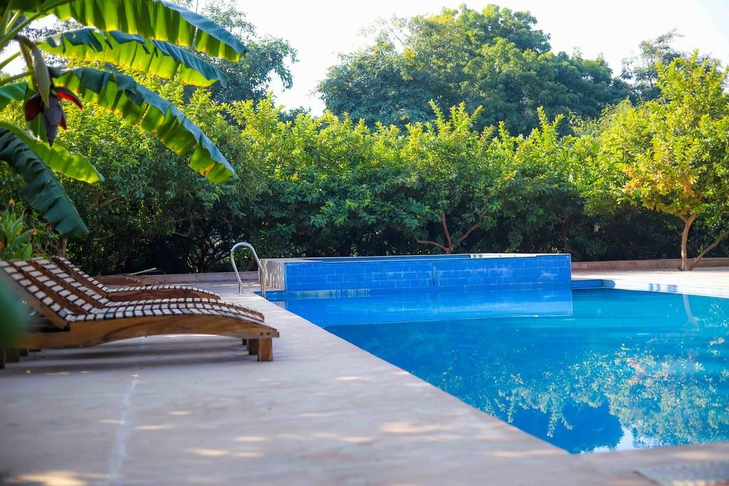 Ranthambore Tiger Inn Comfort Resort Pool1