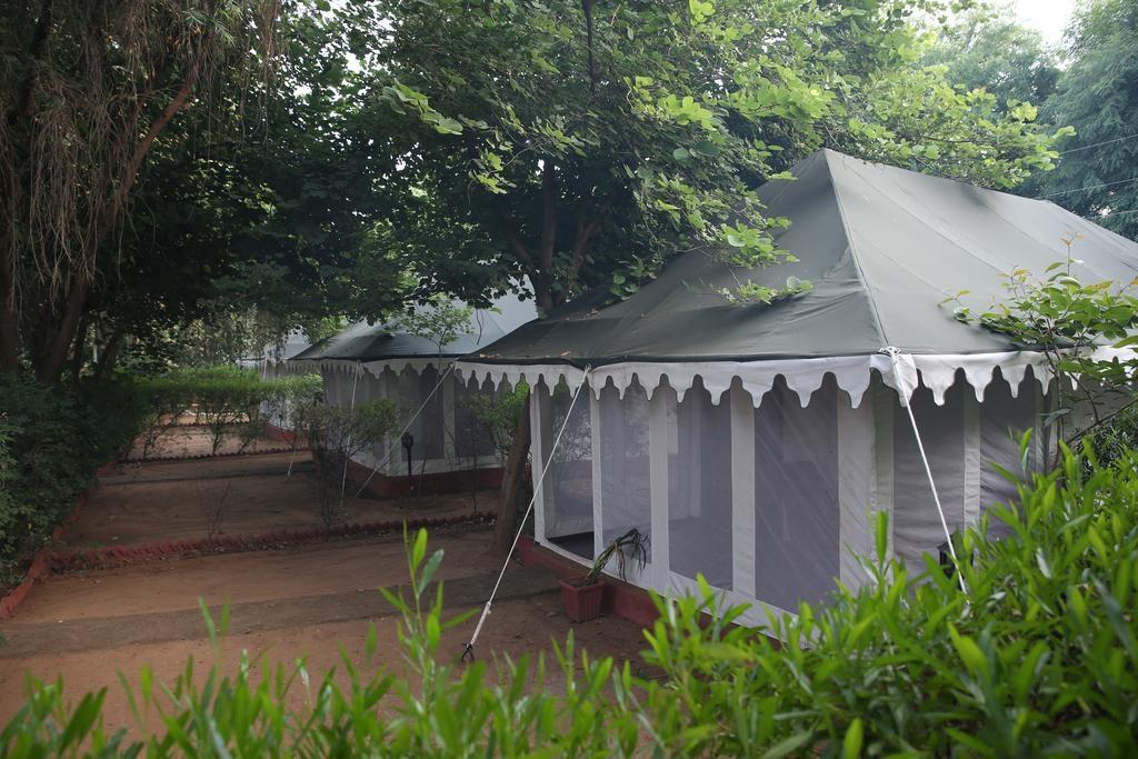 Tiger Machan Resort