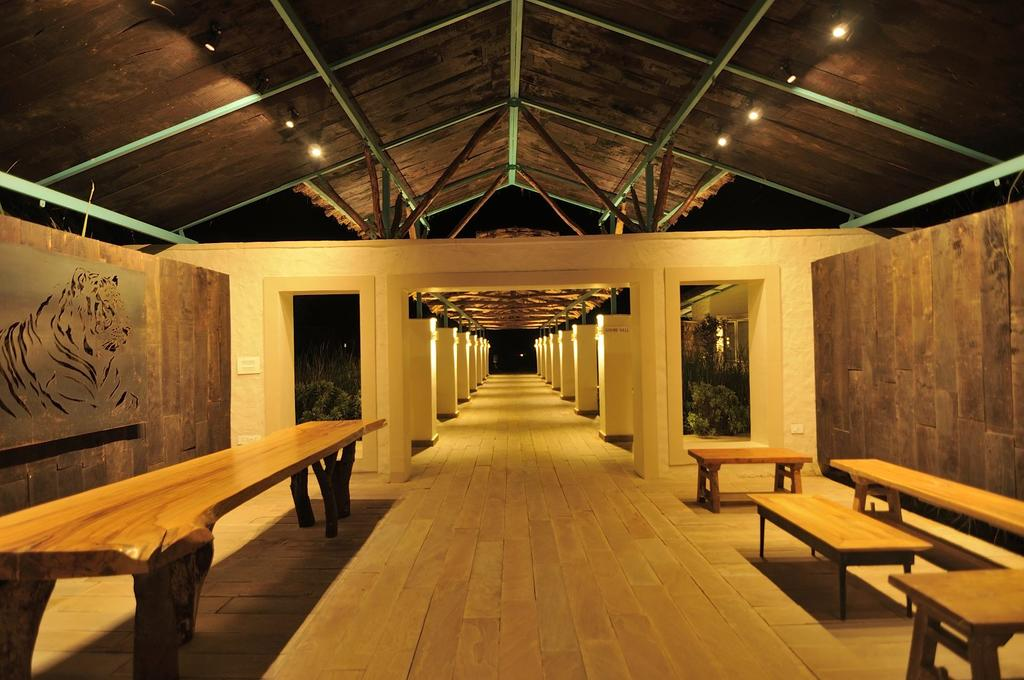 treesntigers-corridor