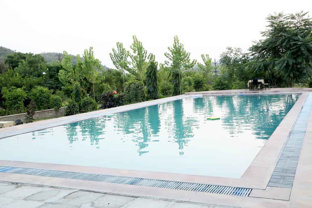 jungle camp-swimmingpool