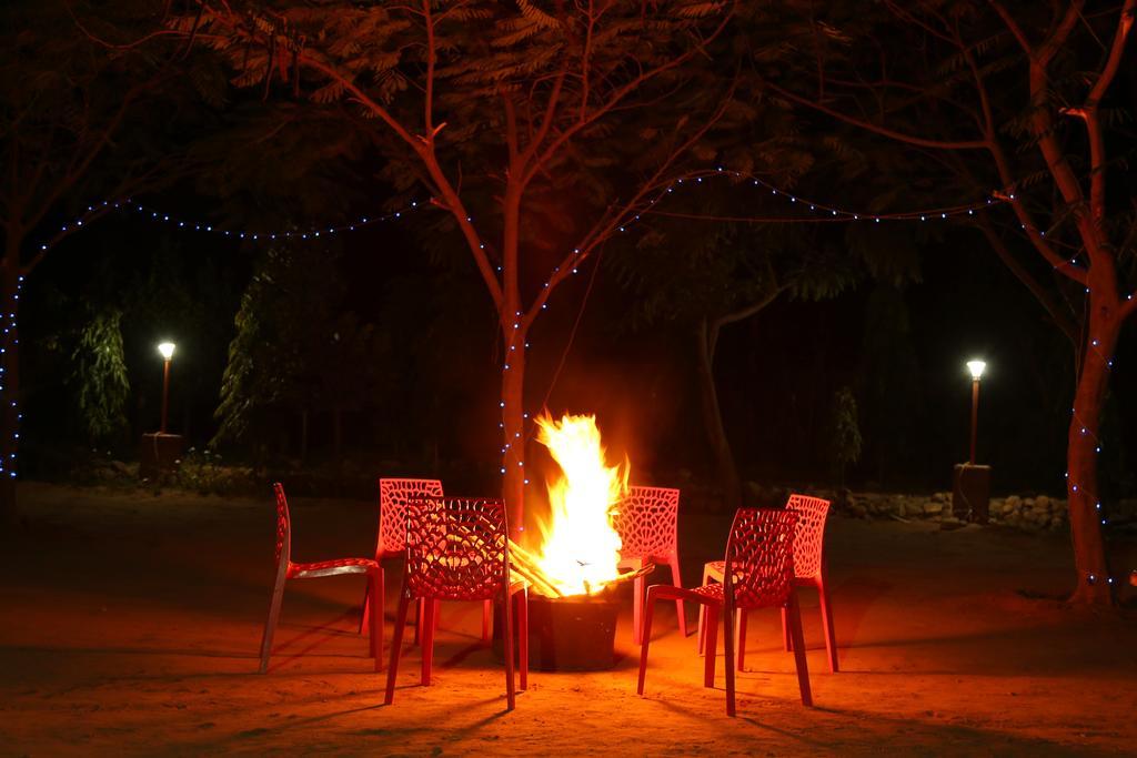 the-jungle-camp-bonefire