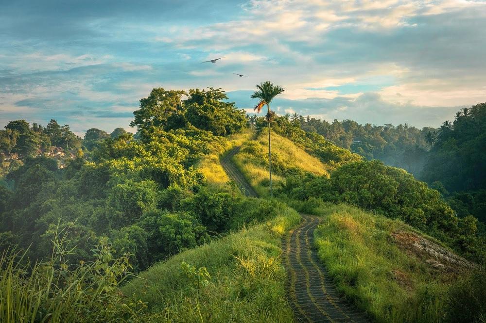 chittagong hills tripura