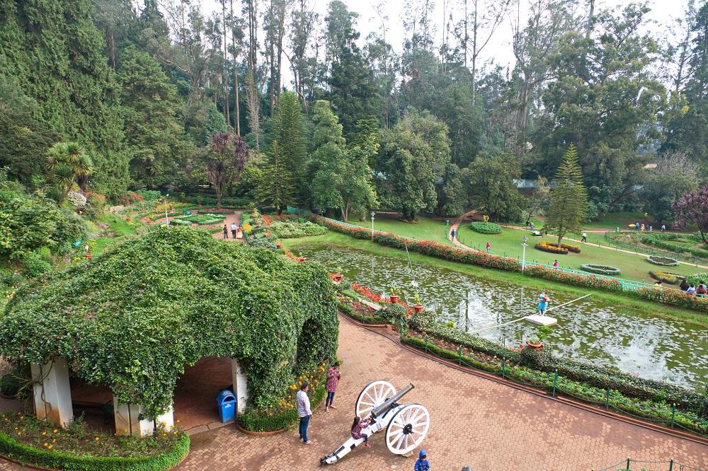 Government Botanical Garden Ooty Tamilnadu