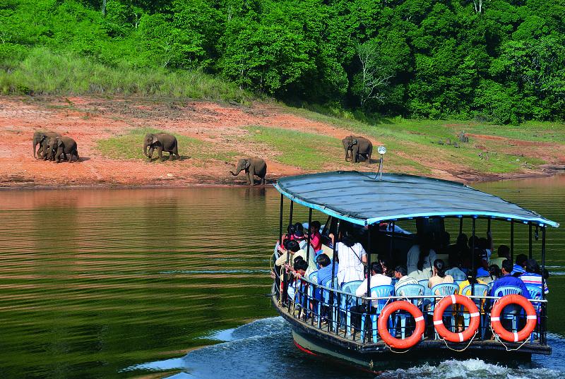 Thekkady Boat ride